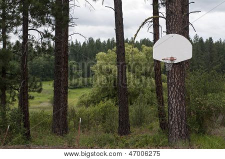 Outdoor Mountain Basketball Hoop