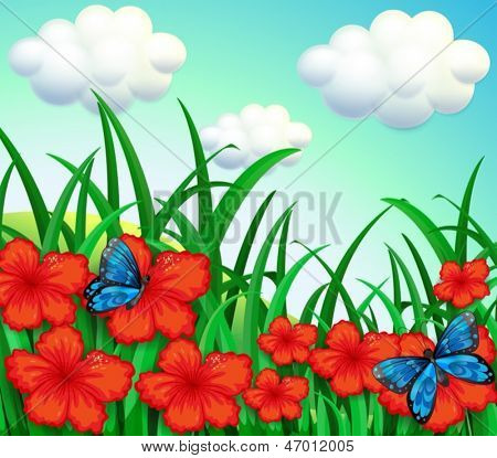 Illustration of a garden with red flowers and blue butterflies