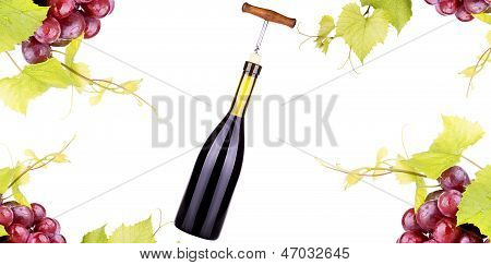 Ripe Grapes, Red Wine And A Bottle Isolated