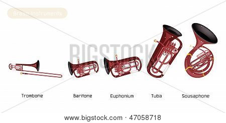 Five Musical Brass Instrument Isolated On White Background