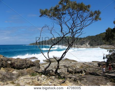 Beach on surf side of Moreton Island