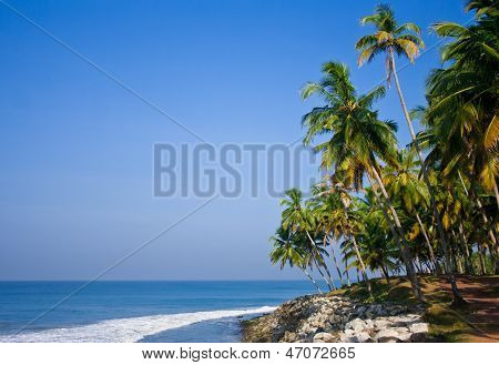 Varkala Beach Whise Stones Palm And Trees On A Sunny Day