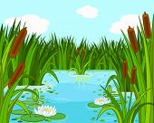 stock photo of ponds  - Illustration of a pond scene - JPG