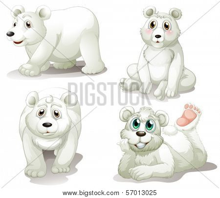 Illustration of the four adorable polar bears on a white background