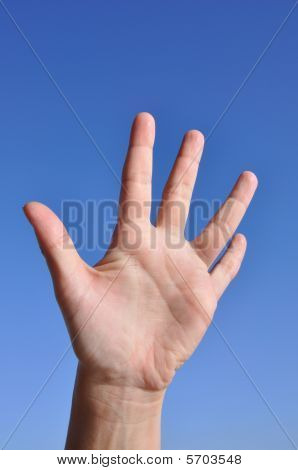 Woman Hand- Five Fingers Open