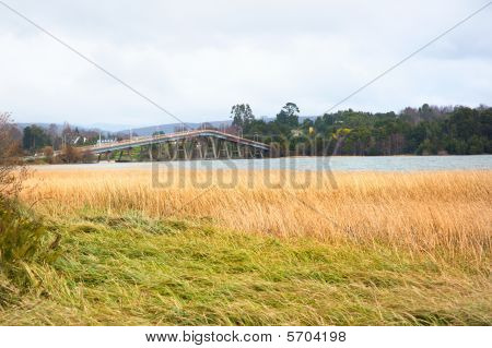 Reeds River And Bridge