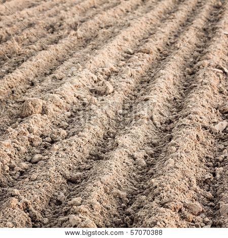 Furrows In A Field After Plowing It