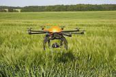 pic of drone  - Flying drone in field -field in Germany