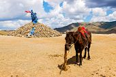 stock photo of superstition mountains  - Horse tethered near a stone cairn in Central Mongolia - JPG