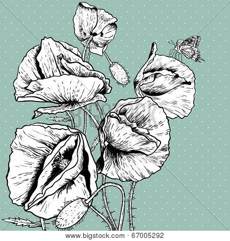 Monochrome Background with Bunch Poppy