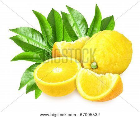 Fresh Yellow Lemons With Green Leaf
