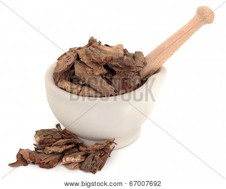 Golden larch bark chinese herbal medicine in a stone mortar with pestle over white background. Tu jin pi. Cortex pseudolaracis.