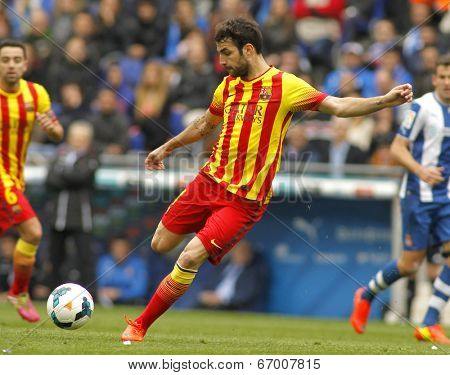 BARCELONA - MARCH, 29: Cesc Fabregas of FC Barcelona in action during a Spanish League match against RCD Espanyol at the Estadi Cornella on March 29, 2014 in Barcelona, Spain