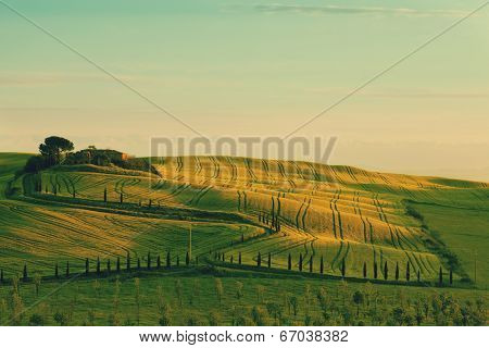 Rolling hills green field