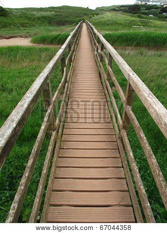 Rural Bridge Landscape