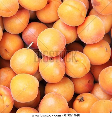 Ripe Fresh Peaches (prunus Mume Or Japanese Apricot)