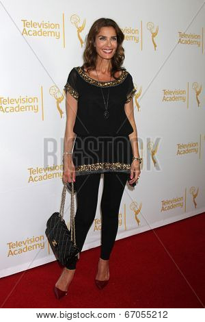 LOS ANGELES - JUN 19:  Kristian Alfonso at the ATAS Daytime Emmy Nominees Reception at the London Hotel on June 19, 2014 in West Hollywood, CA