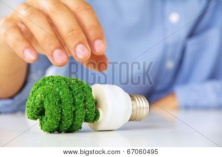 eco light bulb concept