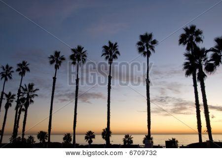 Beautiful sunset in along coast
