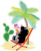 image of mole  - cartoon mole relaxing on chair in tropical beach and eating ice cream - JPG