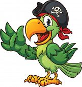 foto of pirate  - Cartoon pirate parrot - JPG