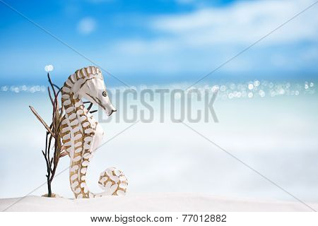 seahorse with red corals on white sand beach, ocean,  sky and seascapee, shallow dof