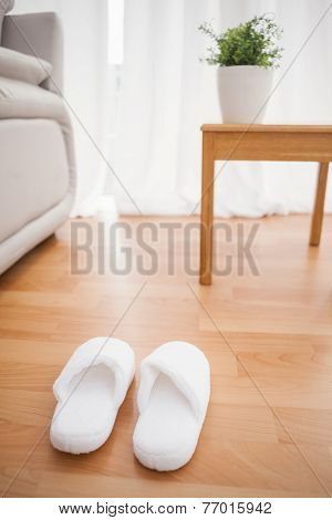 Fluffy slippers on the floor at home in the living room