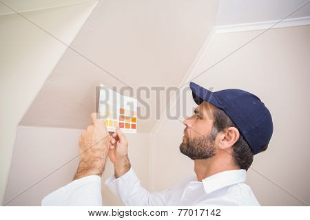 Painter consulting a colour chart in a new house