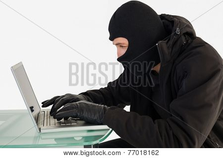 Robber sitting at desk hacking a laptop on white background
