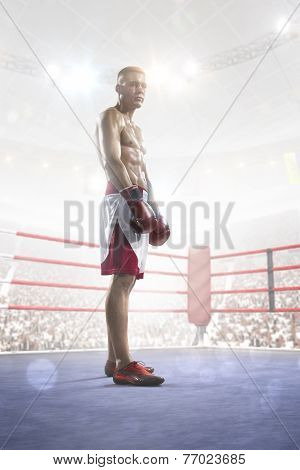 Professional boxer is training on the grand arena