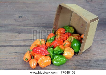 Bhut Jolokia Pepper