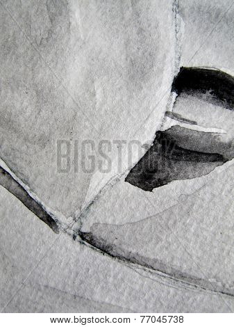 Black and white Watercolor Background 11