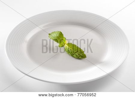 A tiny mint leaf placed at the center of white plate.