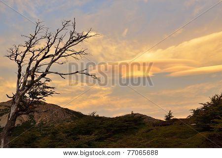Lenticular Clouds In Parque Nacional Los Glaciares