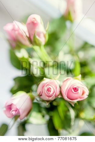 Small Pink Roses Bouquet On The Windowsill In Bright Light