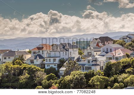 A City Scape Of Wellington, New Zealand