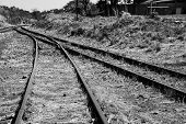 stock photo of merge  - Old overgrown used railway tracks intersection merge in artistic conversion - JPG