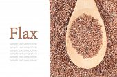 picture of flax seed oil  - flax seeds with a wooden spoon on white background - JPG