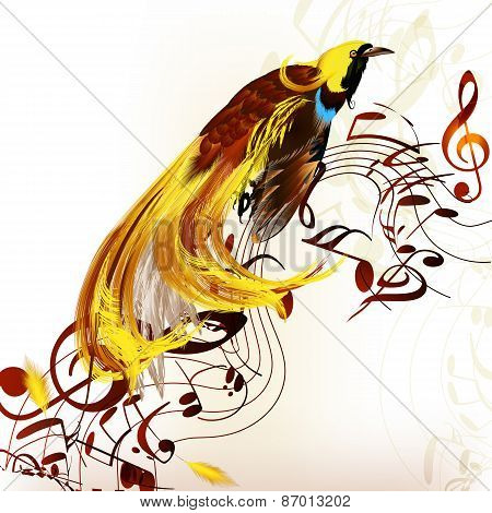 Colorful Tropical Bird With Staves And Notes