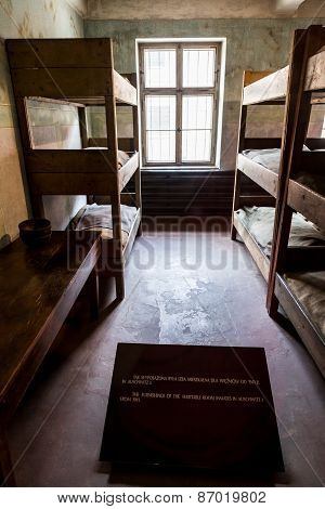 Exhibition In Concentration Camp In Auschwitz.