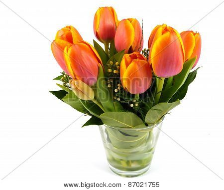 Bouquet of orange Tulip flowers