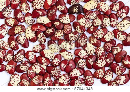 Dried butter beans or lima beans background