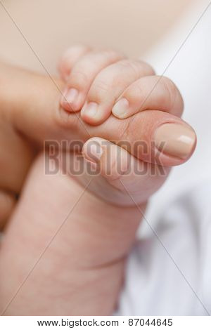 Close-up of baby's hand holding mother's finger