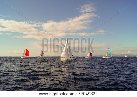 Yacht with colored sail
