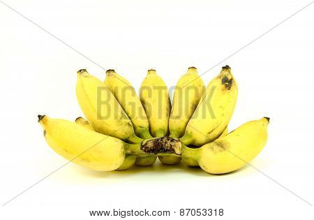 Ripe cultivated banana