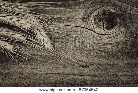 Vintage Dry Wheat Stalks On Rustic Wood