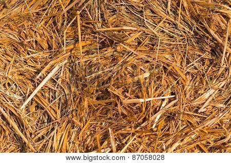 Piled Hay Bales