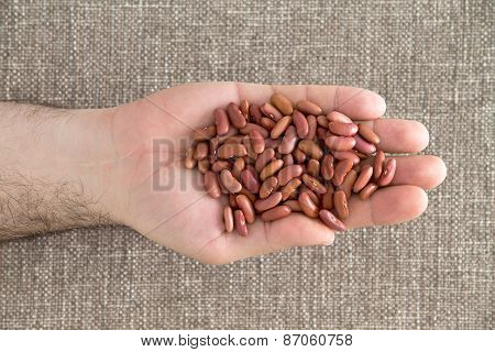 Man Displaying A Handful Of Red Kidney Beans