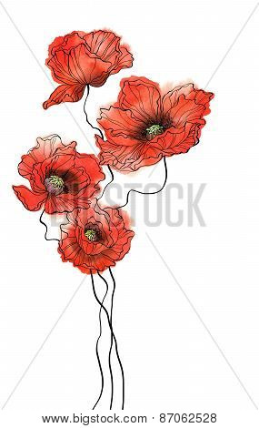 Four Vertical Watercolor Poppies On White Background