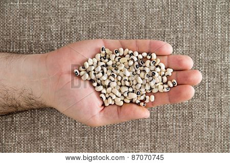 Man Displaying A Handful Of Black-eyed Beans